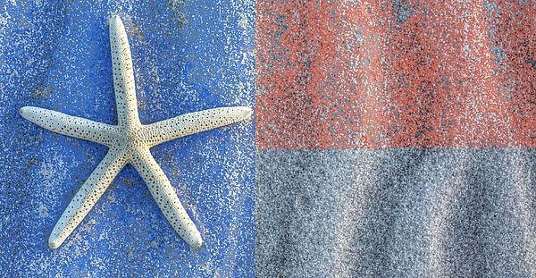 Texas Beach Flag With Images Texas Beaches Beach Flags Beach