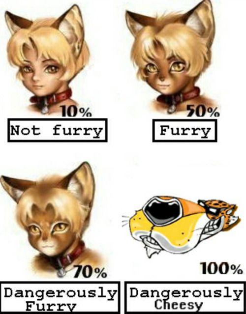 25+ Best Offensive Furry Jokes Memes | Pinned Memes, Alabama...
