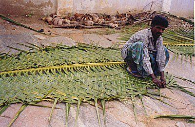 Kamat S Potpourri Man Weaving A Palm Leaf Coconut Leaves Man Weave Palm Leaves