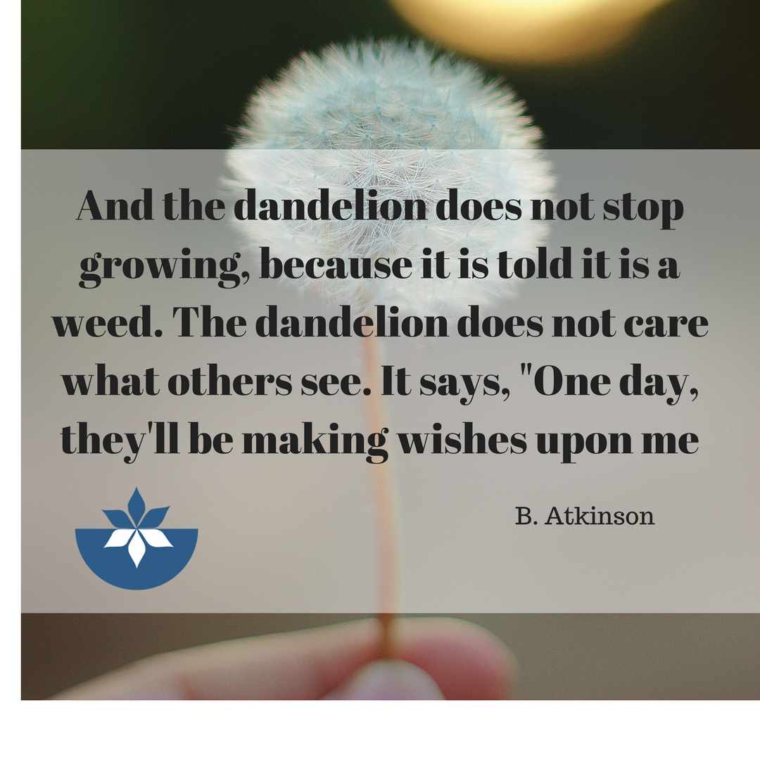 #inspirationalquote #inspiration #quotes #vision #wisdom #nourishednow