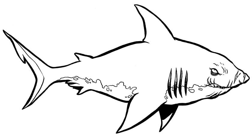 A Very Big Shark Free Printable Coloring Page