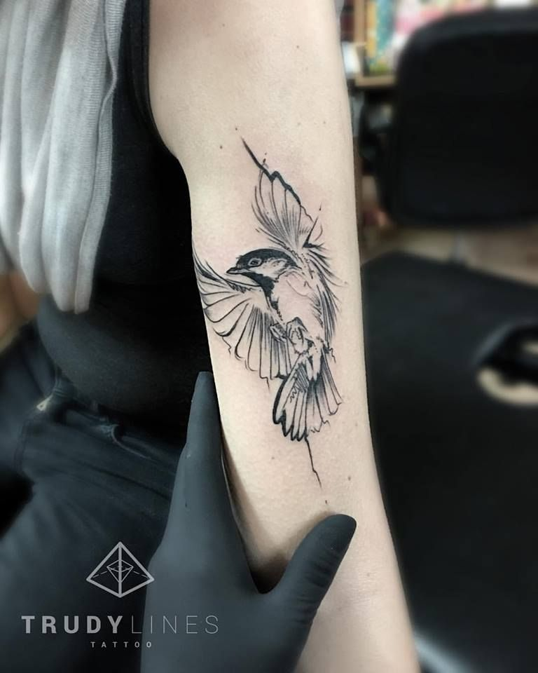 55 Cool Bird Tattoo Ideas That Are Truly In Vogue Birds Tattoo Bird Tattoos Arm Bird Tattoos For Women