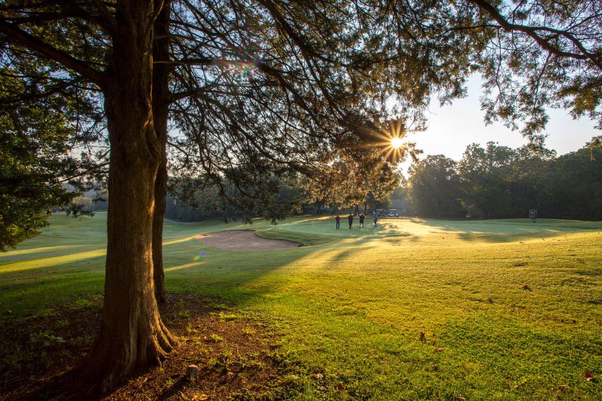10+ Bella vista kingswood golf course ideas in 2021
