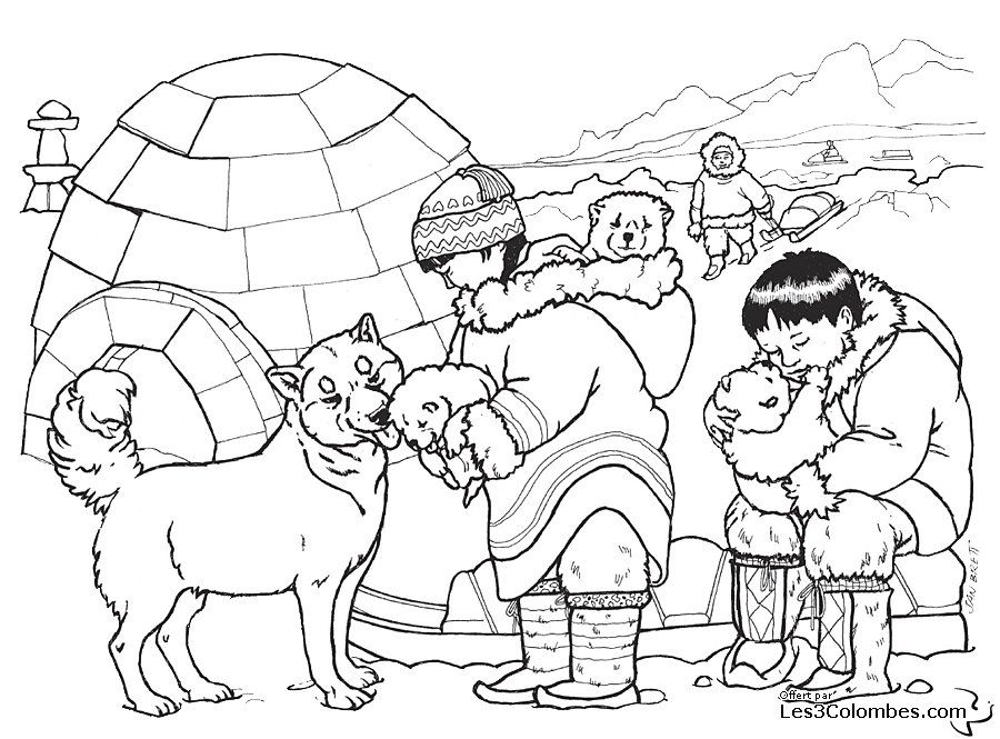 Coloriage Chien Loup Husky Drawings Animaux Polaires Arctique