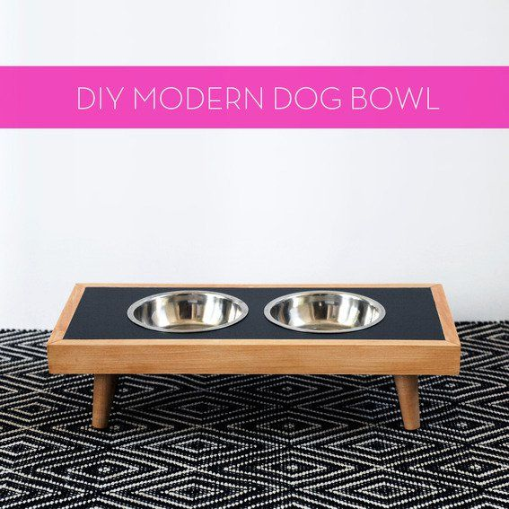 How To Make A Diy Modern Raised Dog Bowl Dog Bowls Raised Dog
