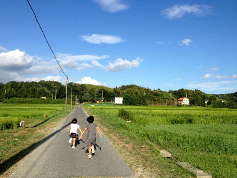 夏の終わりに見ると切ない写真集 | 夏 風景, 風景, 田舎 風景
