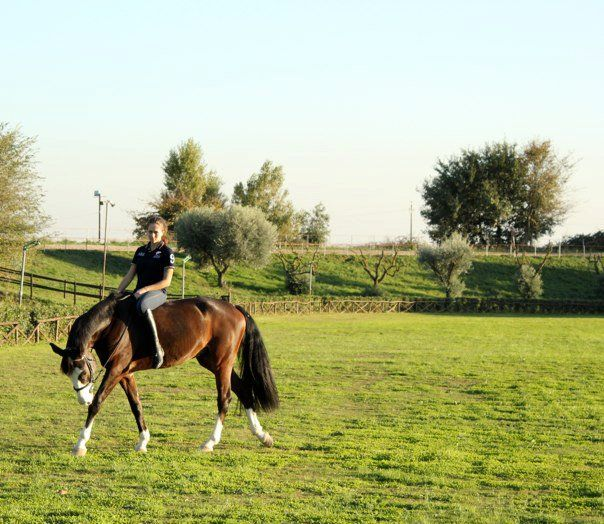 The Shabby Labels - Fashion Blog: I ♥ My Horse    The Shabby Labels - Fashion Blog: I ♥ My Horse    #horse #fun #funny #justforfun #nose #white #face #blue #eyes #girl #woman #relax #love #amore #dolce#sweet #animals #animali #sport #passion