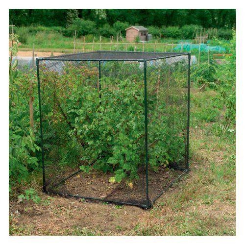 Gardman 7660 Fruit Cage, Small by Gardman, http://www.amazon.com/dp/B007KKVW14/ref=cm_sw_r_pi_dp_sT8hsb0N9KTWZ