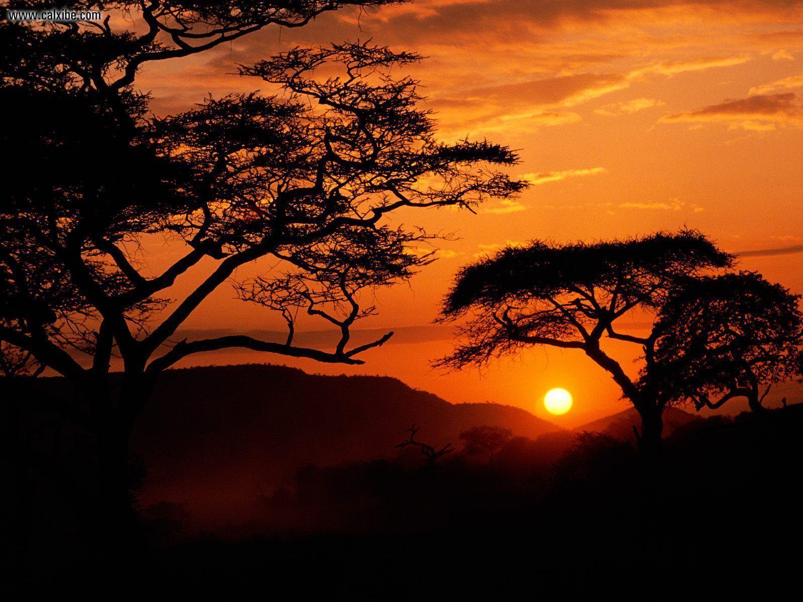 High Resolution Nature Desktop Wallpaper Of Serengeti National Park Sunset Tanzania ID