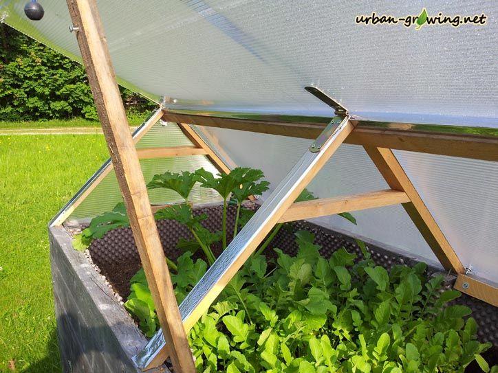 Hochbeetdach Dach Fur Hochbeet Hochbeetwetterschutz In 2020 Hochbeet Beete Dach