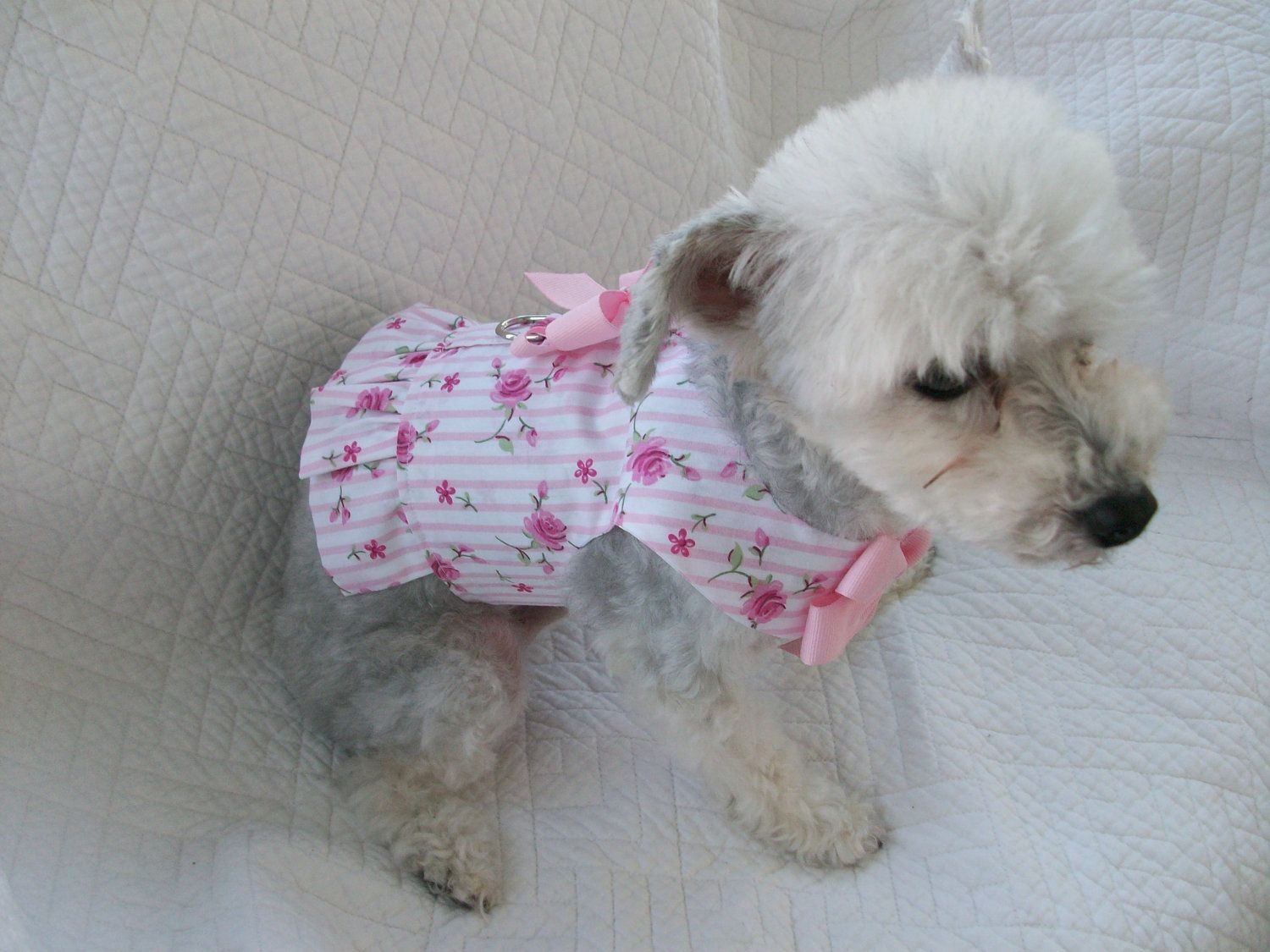 Dog harness pink shabby chic roses harness ruffled vest for Shabby chic dog