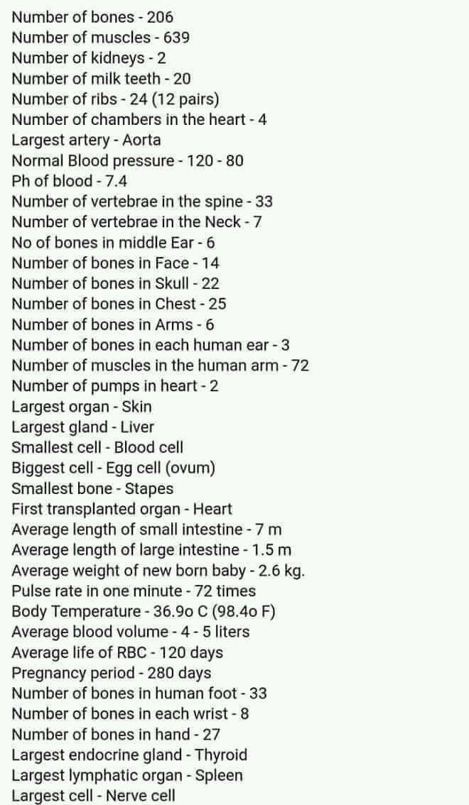Human Body #medicalstudents