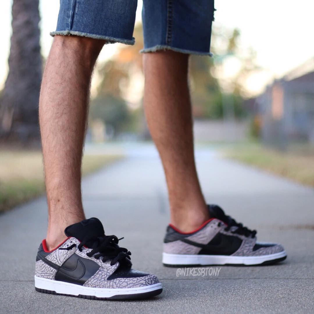 Supreme x Nike Dunk Low Pro SB \