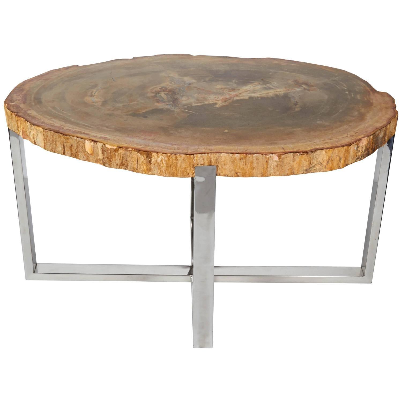 Organic Modern Petrified Wood Side Table with Chrome Base