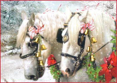 Equestrian Christmas Cards Horse Christmas Cards Horse Cards Horse Gifts