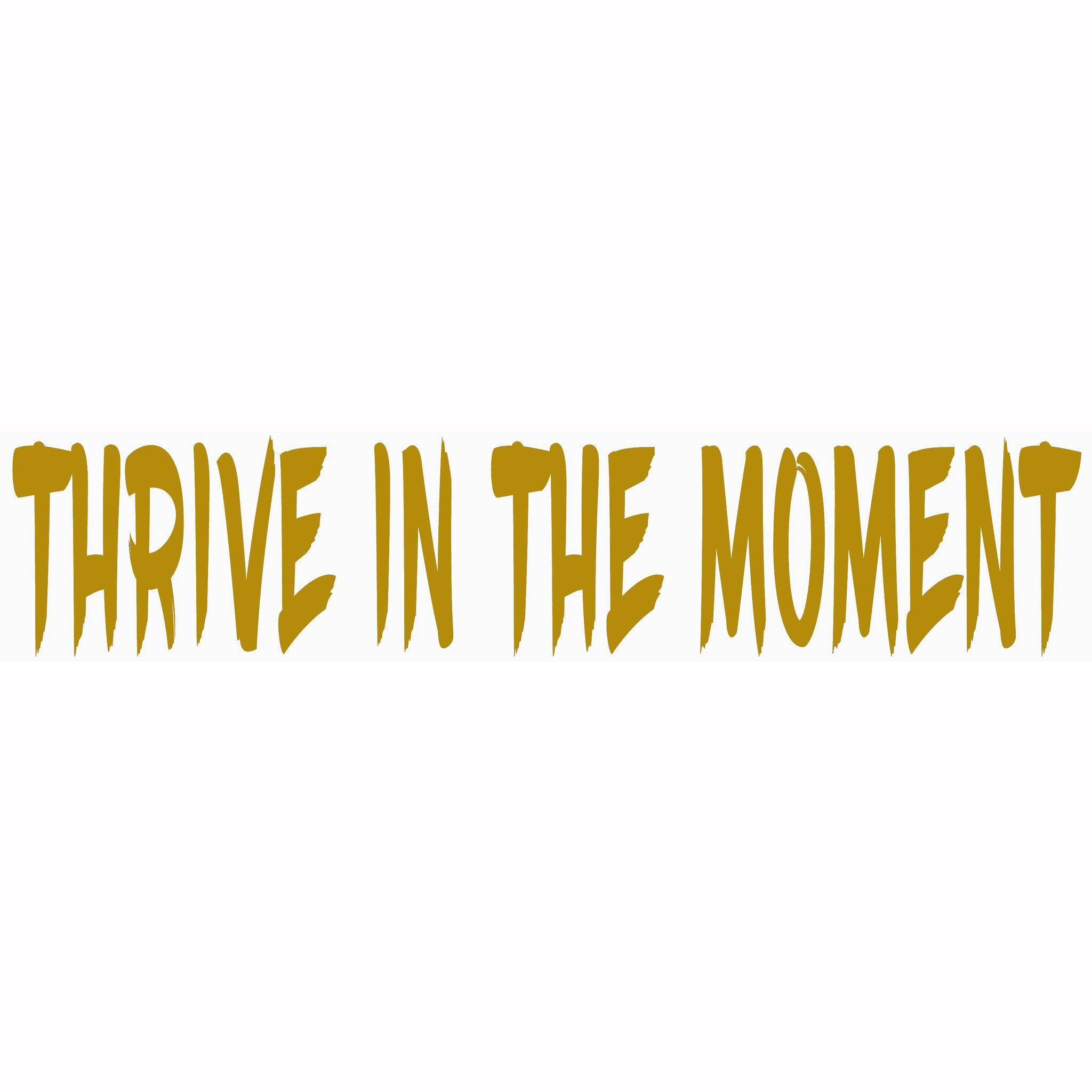 "THRIVE IN THE MOMENT Car decal/ window decal/bumper sticker. 9""X2 ..."