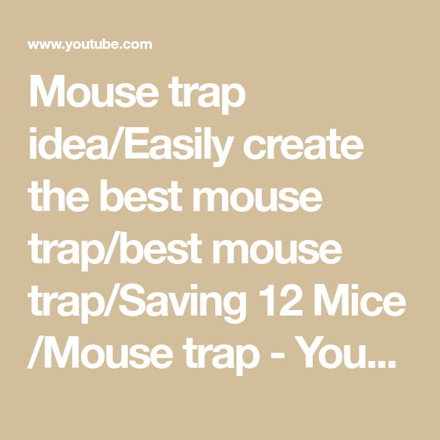 Mouse trap idea/Easily create the best mouse trap/best mouse trap/Saving 12 Mice /Mouse trap - YouTube #mousetrap