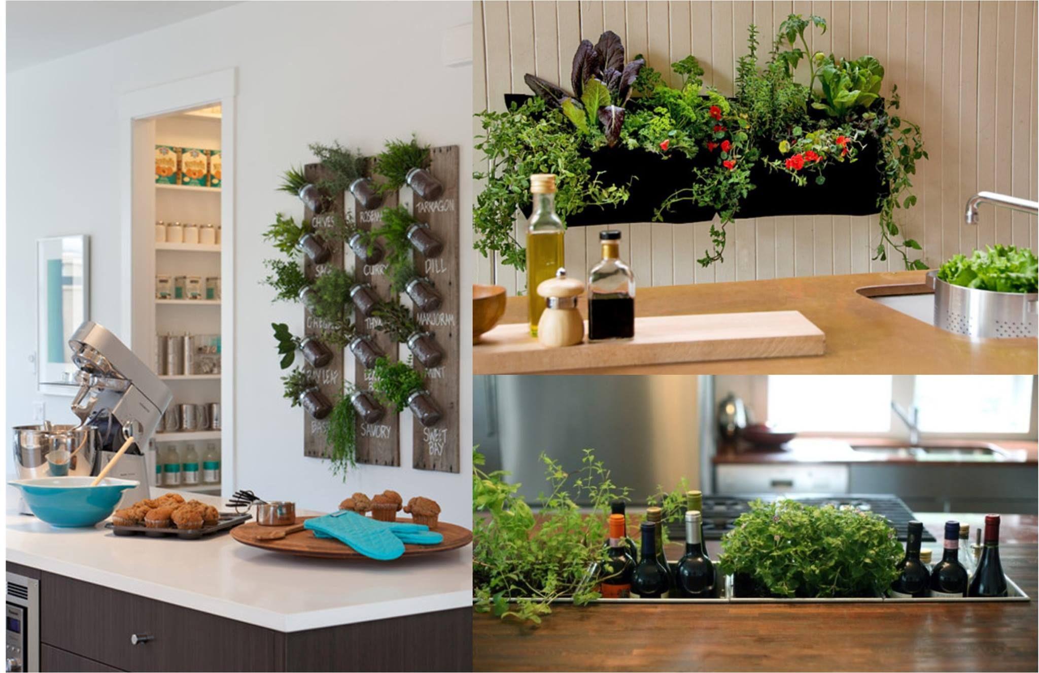 indoor kitchen gardens that are integrated into walls and countertops indoor garden indoor on kitchen garden id=67536
