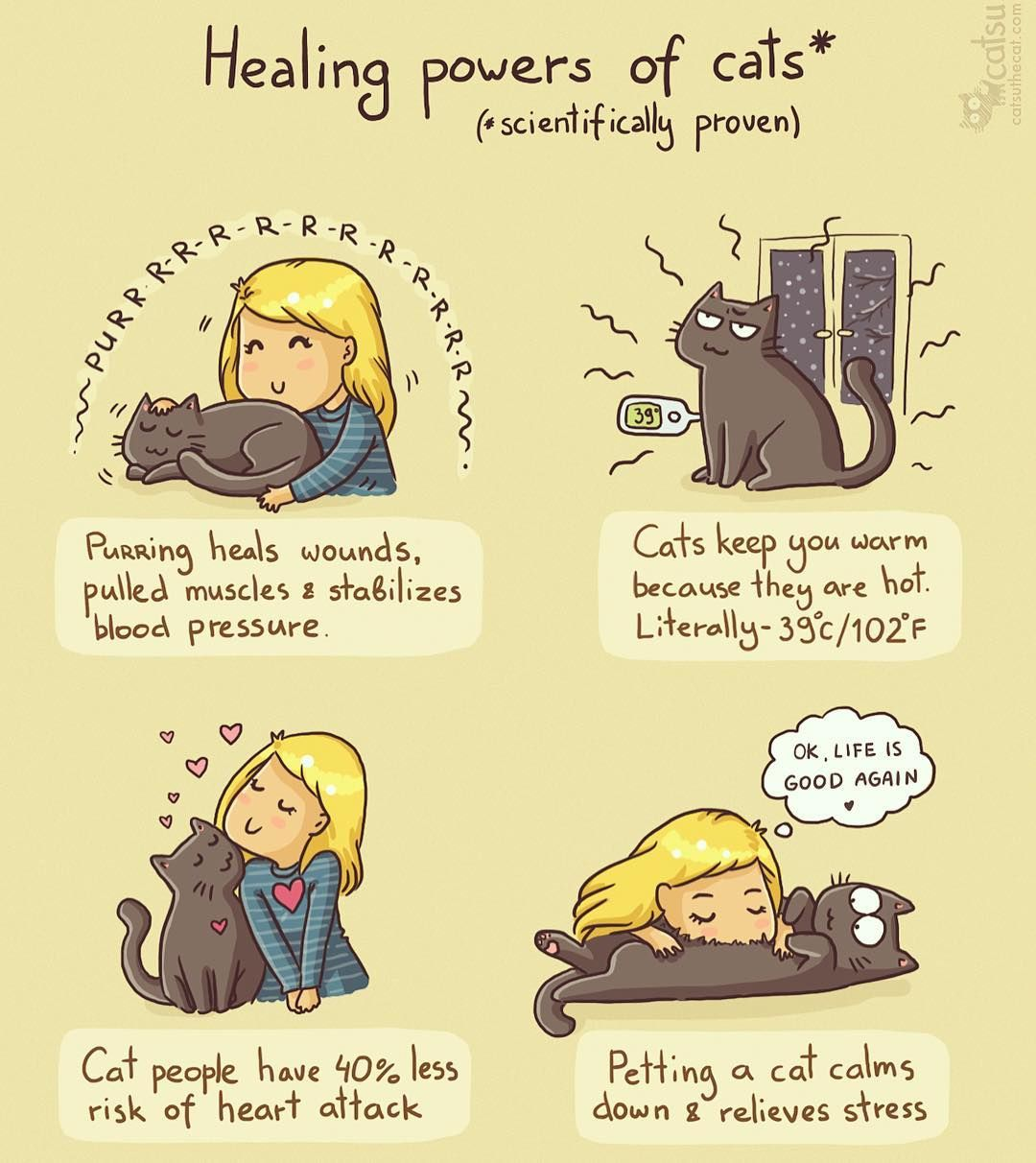 "Polubienia: 4,151, komentarze: 157 – CatsuTheCat (@catsuthecat) na Instagramie: ""It's cold season, so stay healthy!🐱 #catsu #catsuthecat #catcomics #catcomic #neko #kawaii…"""