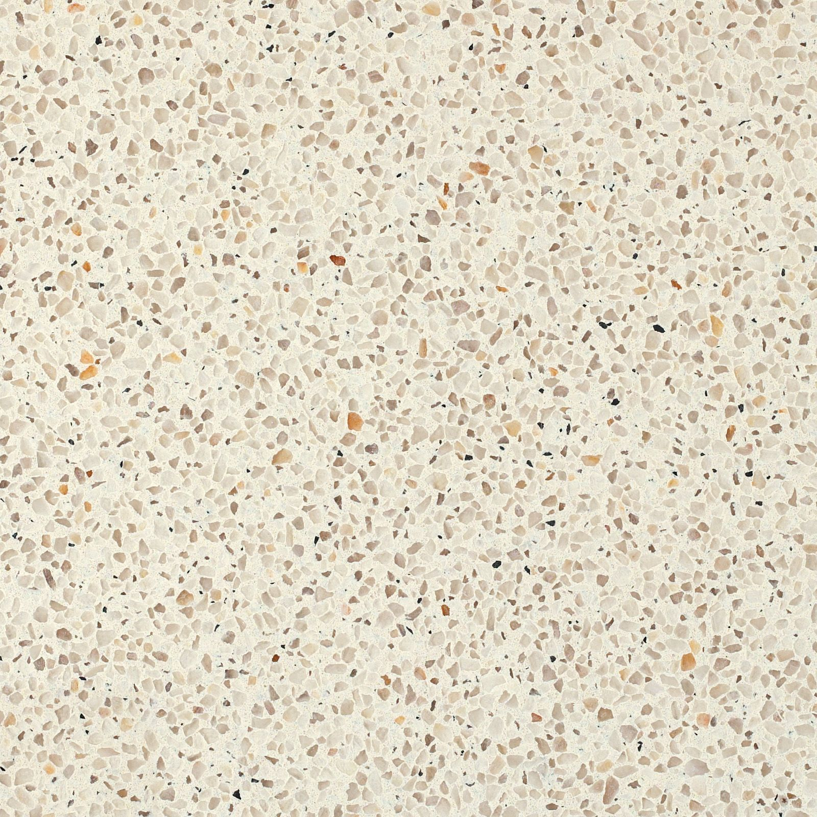 Oyster 9601 Caesarstone Pinterest Oysters And