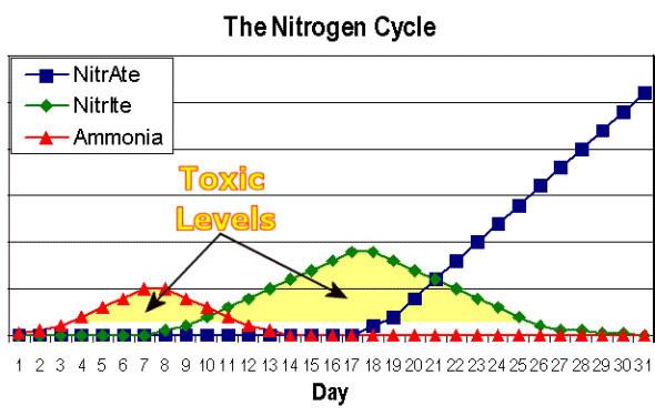 Tank Cycle Chart Google Search Nitrogen Cycle Aquarium Maintenance Aquaponic Gardening