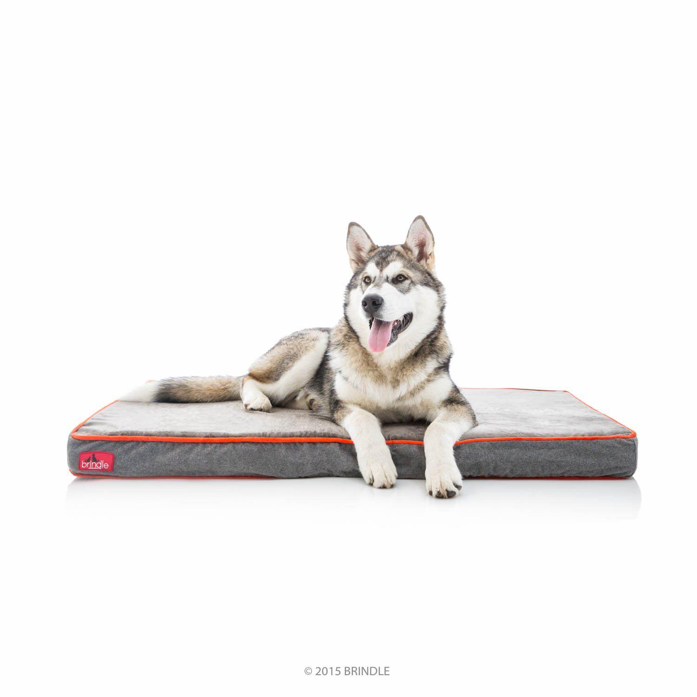 Brindle Waterproof Designer Memory Foam Pet Bed * Want