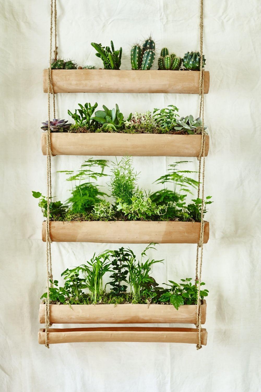 Mini garden Indoor Trending on Gardenista The Mini