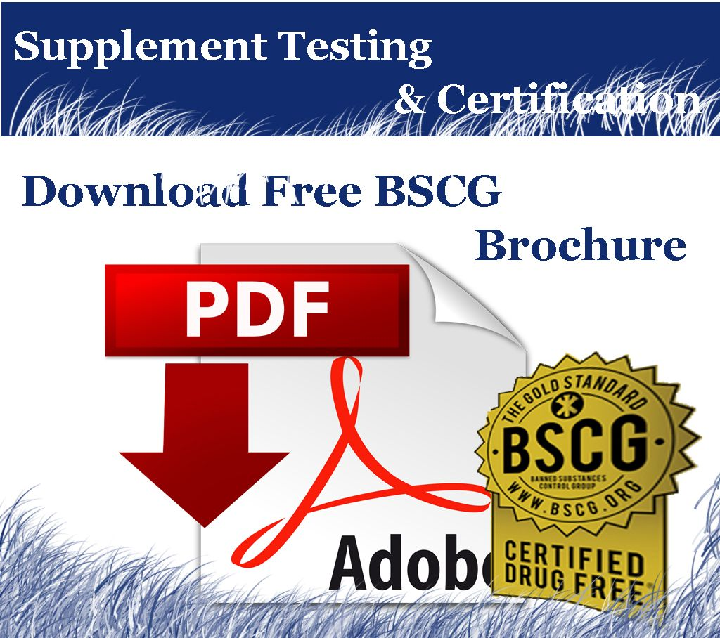 Download Bscg Pdf Brochure In This Pdf Supplement Certification