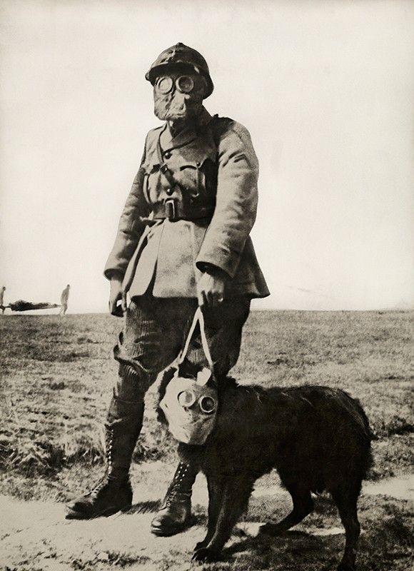 Un sargento francés y su perro portan máscaras antigas en las líneas frontales en la Primera Guerra Mundial. En el horizonte, un hombre herido es cargado en una camilla. Con su nariz, los perros pueden detectar el gas y ladrar alertando antes de que las tropas puedan detectar los químicos.