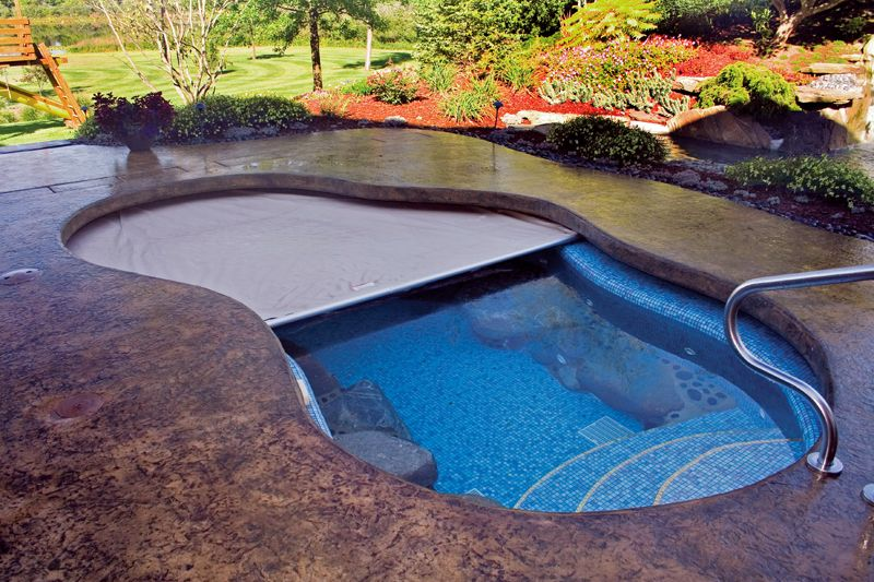 This Freeform Pool Has An Extended Cantilever Deck That Hides The Track System For The Automatic Cover Automatic Pool Cover Inground Pool Covers Pool At Night