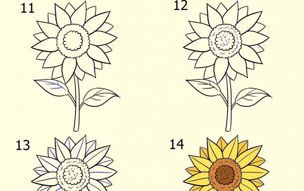 Gambar Taman Bunga Yang Mudah Digambar Ideku Unik