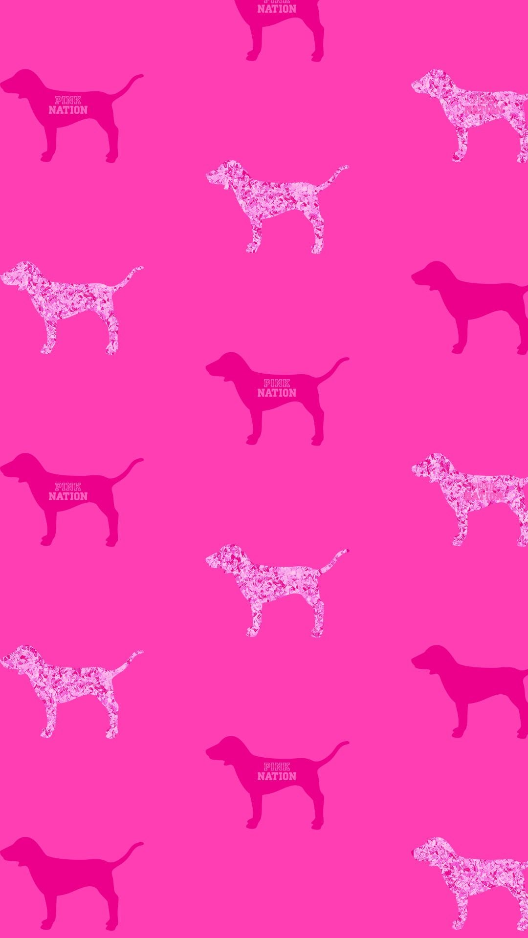 victoria secret pink vspink dog print wallpaper iphone