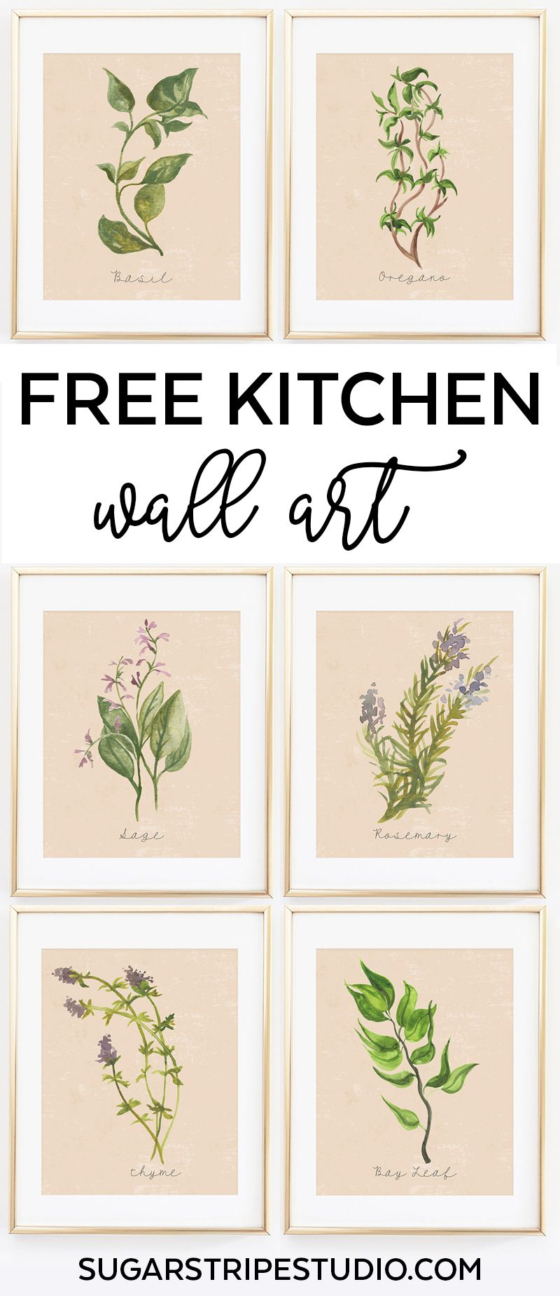 Free Kitchen Botanical Prints Printables Herb Collection