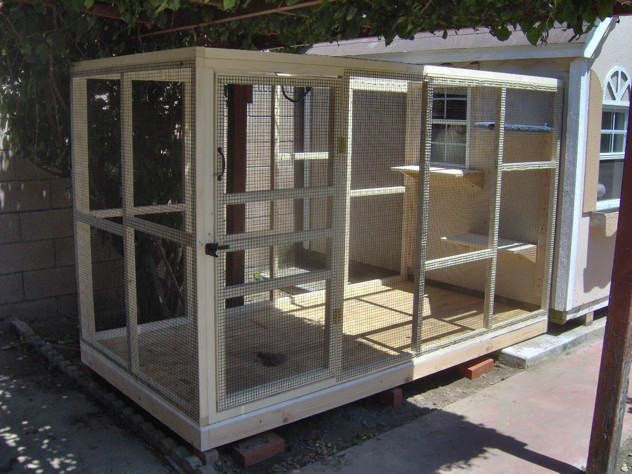 Attached home enclosure for cats. Cat enclosure, Outdoor