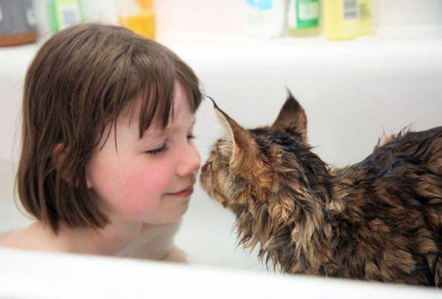 Menina autista faz terapia com ajuda de seu gato de estimação