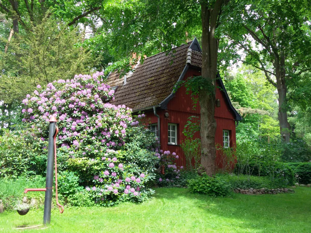 Ferienhaus In Himmelpfort Am See Himmelpfort Herr Lutz Watzke Ferienhaus Traum Ferienwohnung Ferien