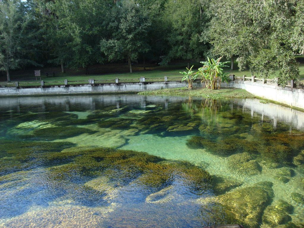 Salt Springs Natural Healing Mineral Water Places You