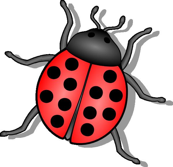 Lady Bug Clip Art At Clker Com   Vector Clip Art Online Royalty Free