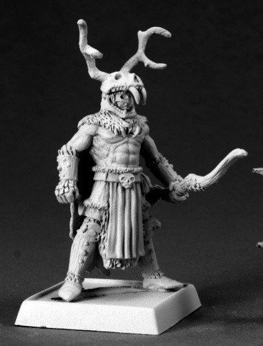 Pathfinder Miniatures (The Stag Lord 60073) RPG 25mm Minis