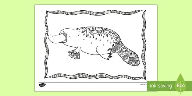 Platypus Mindfulness Colouring Page - Australian ...