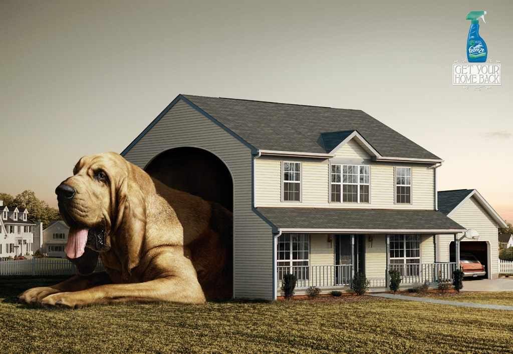 Febreze pet odor eliminator: Doghouse