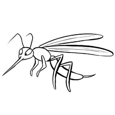 La Chachipedia Dibujos Para Colorear De Mosquitos Gifs Animados Y Dibujos Para Imprimir A Color