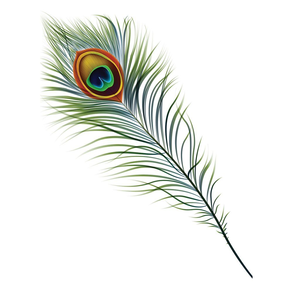 Lowes Wall Murals shop jp london pmur2226 simple peacock feather ustrip peel and