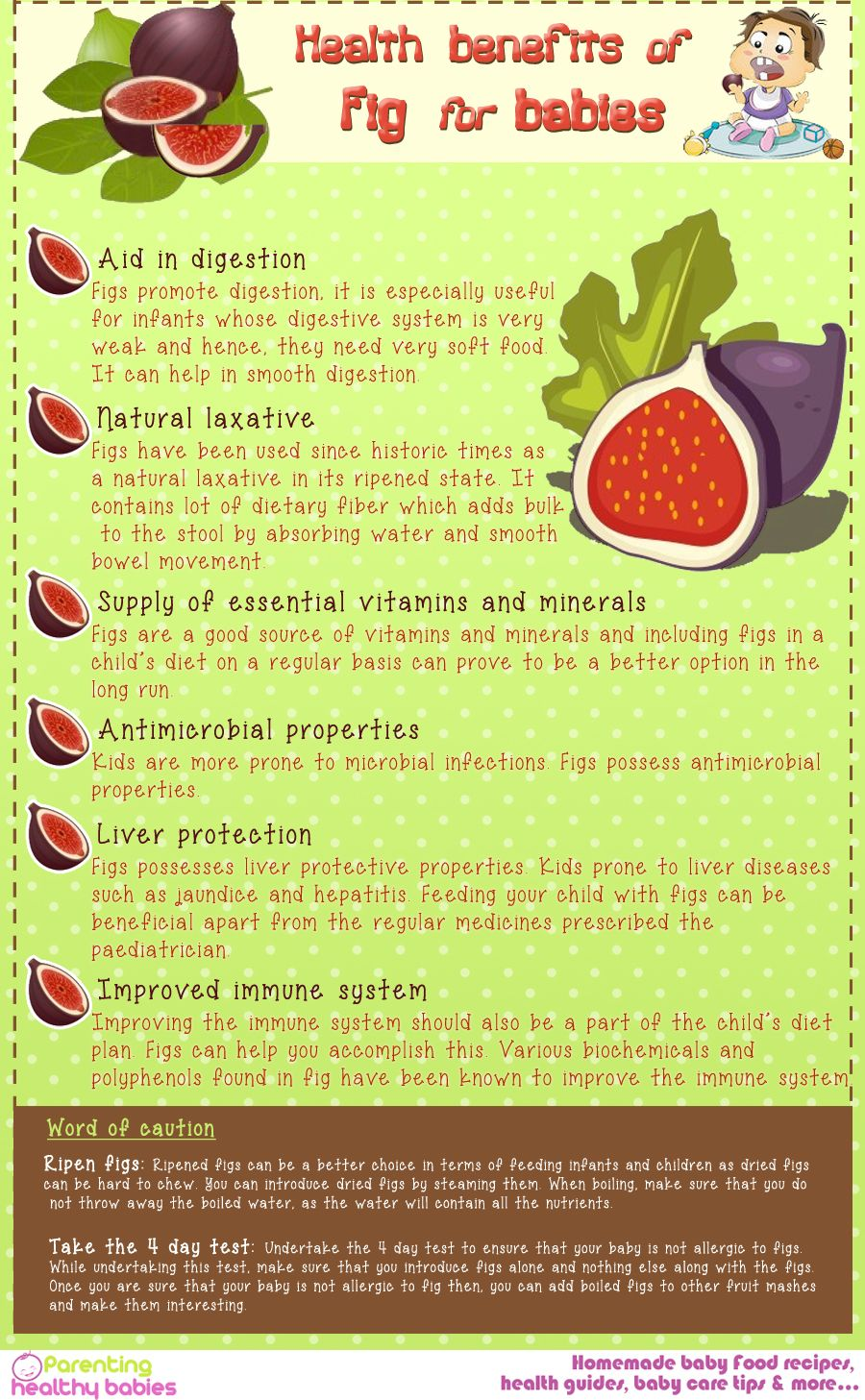 Health benefits of fig health pinterest health benefits health benefits of fig forumfinder Images