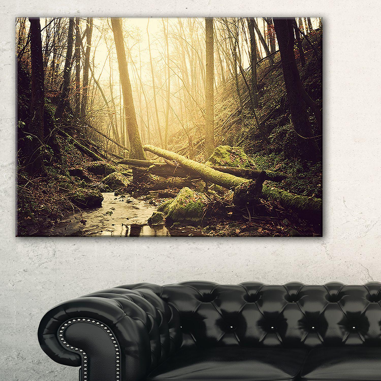 Stream in the Dark Wild Forest - Forest Wall Art