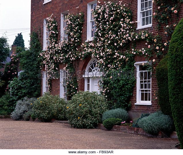 exterior of georgian country house with pink climbing