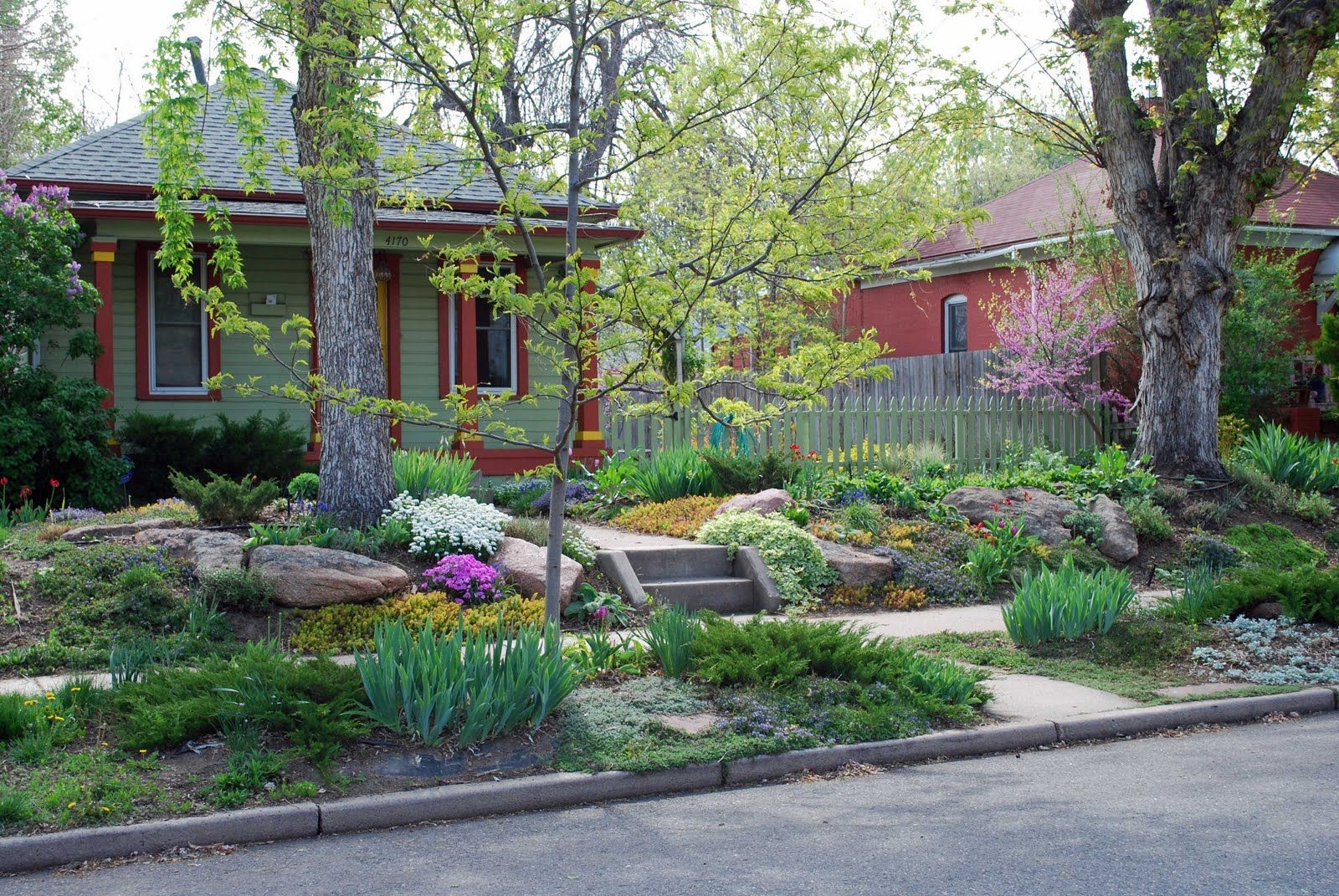 Grass Alternatives For Shady Backyards | Big Boulders For Structure And A  Succession Of Colorful Plantings