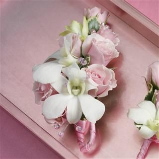Pink Rose And White Orchid Corsage Buttonholes Wedding Pink Orchid Corsages Prom Corsage And Boutonniere
