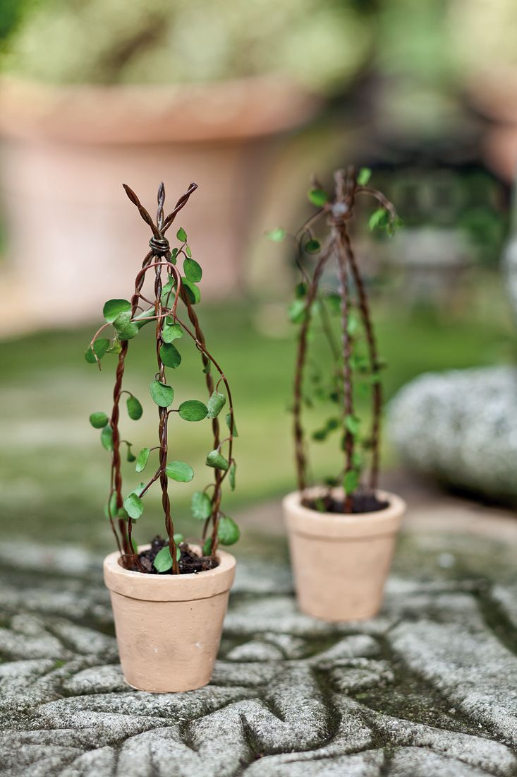 Mini Garden Wire Trellis In A Tiny Pot A Small Trellis For A