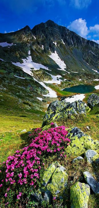 Let your mood blossom when you spend your time in this beckoning place!